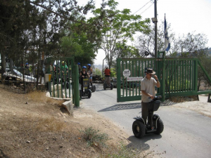 peace forest segway