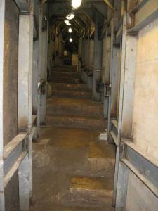 tunnels5